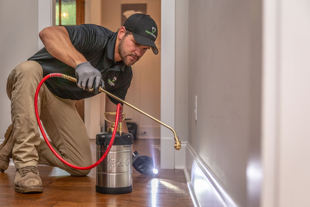 PestGuard Solutions Greenville Extermination Company
